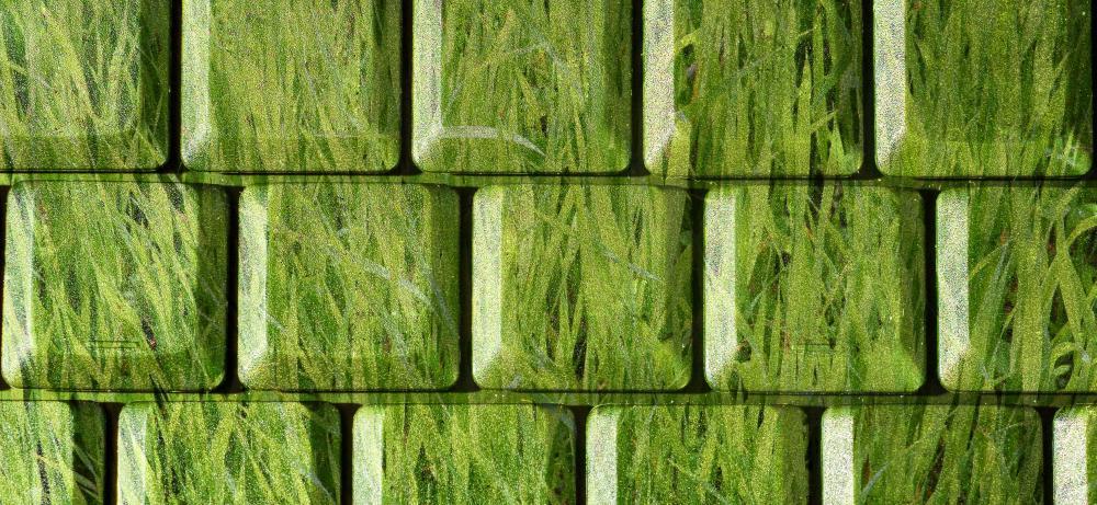 Grassy keyboard