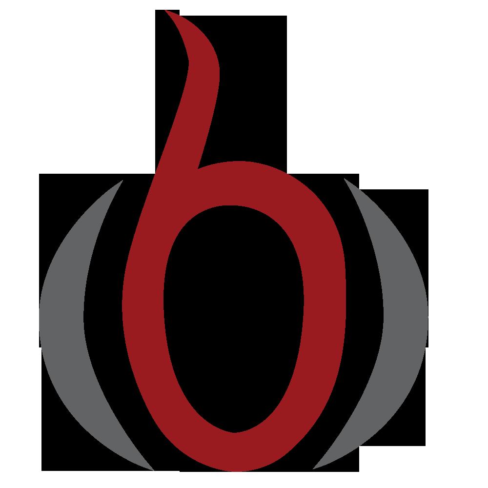 Centre for Biomedical Computing logo